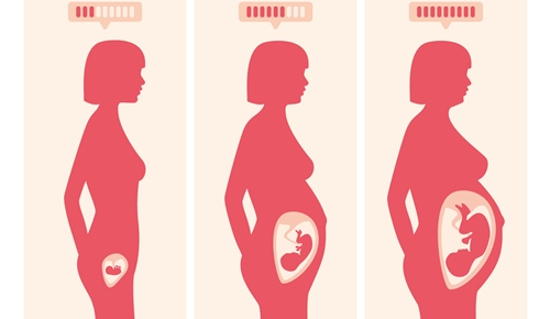 Em que semana é que aparece a barriga na gravidez?