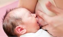 Porque é que os recém-nascidos não querem comer?