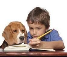 Os animais de estimação e as crianças!