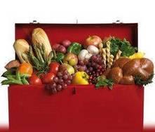 Introdução dos alimentos sólidos