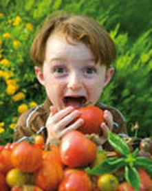Saiba o que fazer para que o seu filho não recuse comer alguns alimentos!